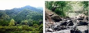 道志の山々と道志川