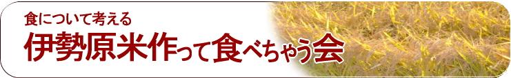 150831iseharamai.jpg