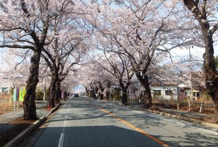 20140410_fukushima-houmon2.jpg