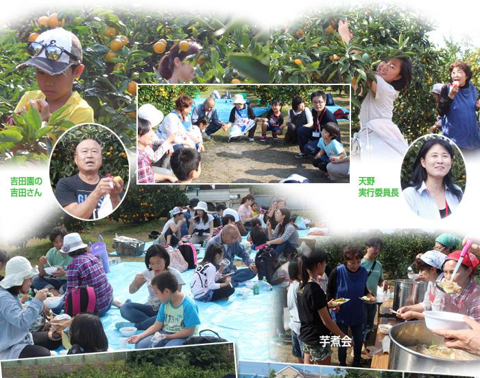 151024_mikan_02.jpg