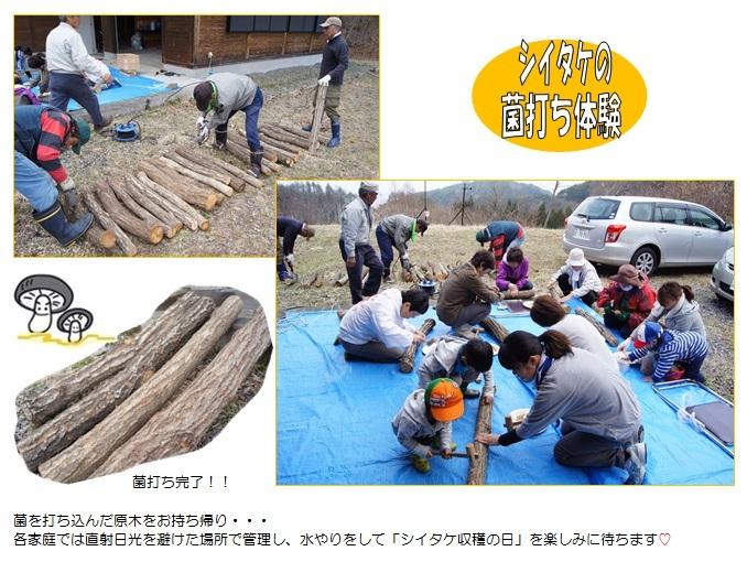 20140419_moridukuri2.jpg