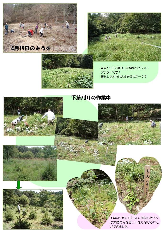 0906_moridukuri.jpg