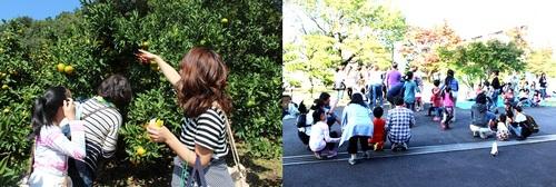 神奈川県内避難者交流会 みかん狩りと芋煮会