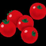 ミニトマト 赤.png