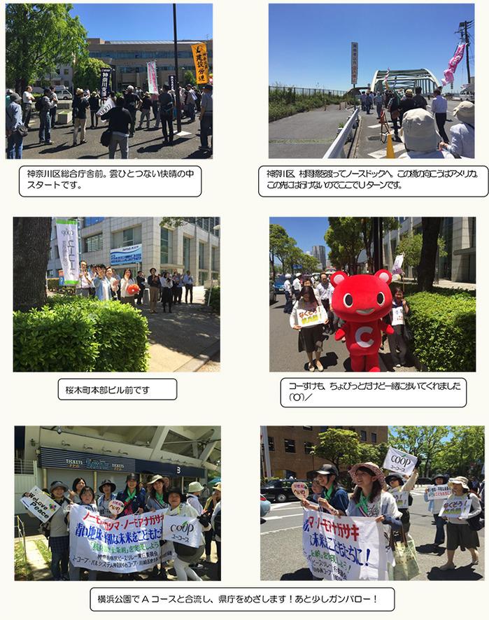 ts_2016heiwa_0512_B.jpg