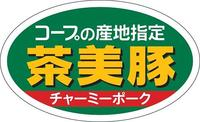 cyami_rogo.jpg