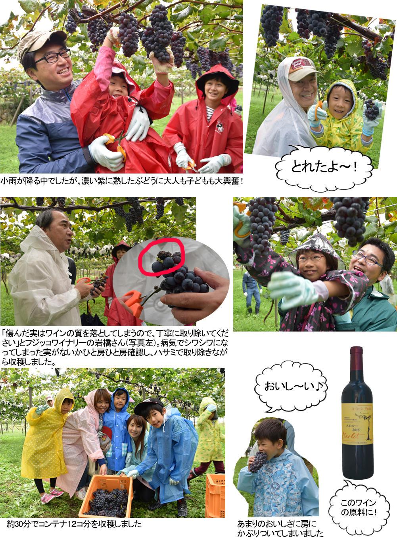 http://www.ucoop.or.jp/hiroba/report/files/160922_1.jpg