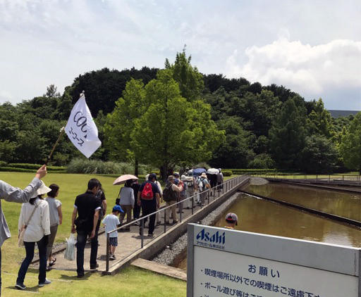 midorisashikae.jpg