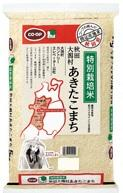 171110_akitakomati.jpg