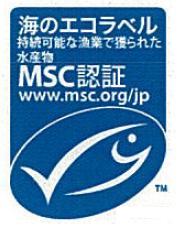121225MSC-5.jpg