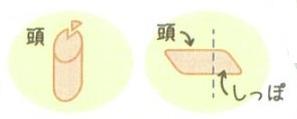 kitune3.jpg