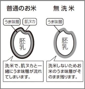 QA_1104_4_1.jpg