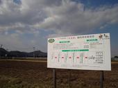 茶美豚飼料用米栽培田