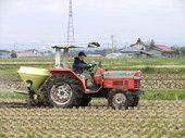 田んぼへ肥料散布