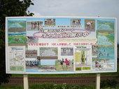 花巻市内の石鳥谷八幡地区で田んぼアートキャンバスが展示でした