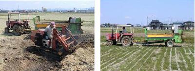 子牛たちの堆肥を散布します