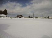 ふだんは雪降りです