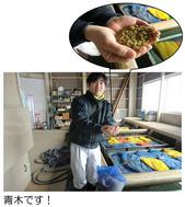 青木さんの手のひらに種籾がありますよ
