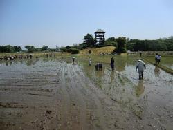 180603_iwate4.jpg