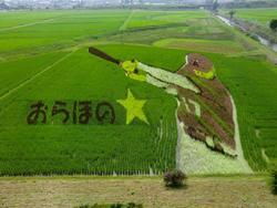180718_iwate1.jpg