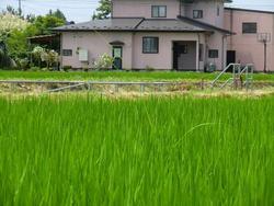 180725_iwate3.jpg