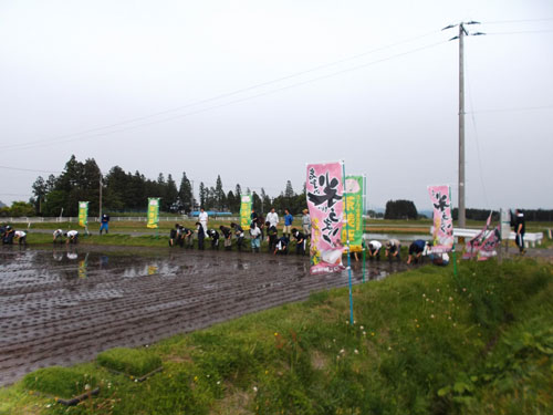 http://www.ucoop.or.jp/shouhin/shoku_shokuryo/sanchi/files/1-suta-to.jpg