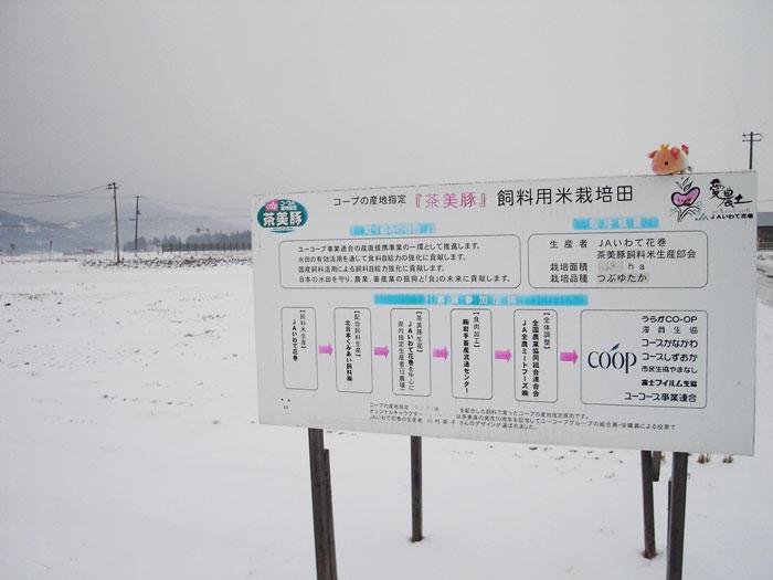 http://www.ucoop.or.jp/shouhin/shoku_shokuryo/sanchi/files/111230tya02.jpg