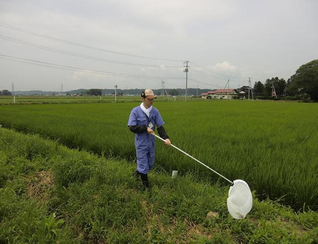 http://www.ucoop.or.jp/shouhin/shoku_shokuryo/sanchi/files/120727-1.jpg