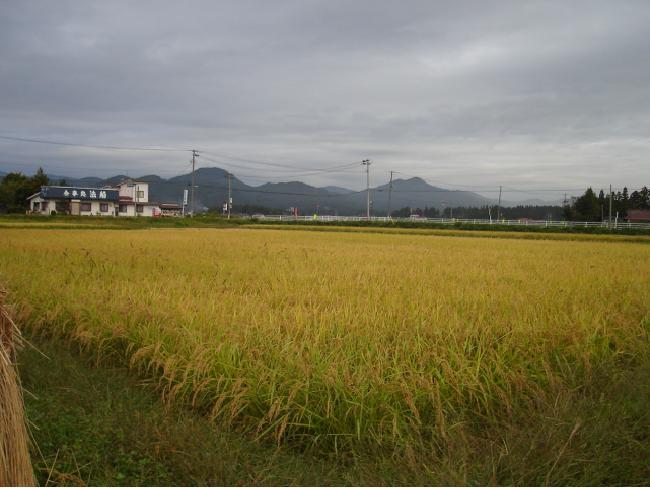 http://www.ucoop.or.jp/shouhin/shoku_shokuryo/sanchi/files/121006siryouyou2.JPG