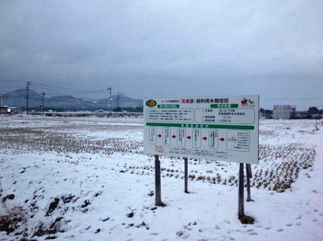 http://www.ucoop.or.jp/shouhin/shoku_shokuryo/sanchi/files/121129kanban1-1.jpg