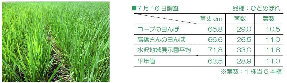 http://www.ucoop.or.jp/shouhin/shoku_shokuryo/sanchi/files/130716chousa.JPG