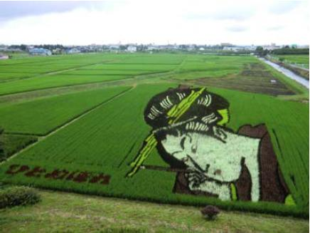 http://www.ucoop.or.jp/shouhin/shoku_shokuryo/sanchi/files/130725-2bijinnga.JPG