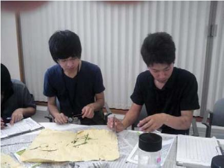 http://www.ucoop.or.jp/shouhin/shoku_shokuryo/sanchi/files/130731senndatateno.JPG