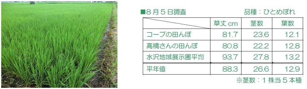 http://www.ucoop.or.jp/shouhin/shoku_shokuryo/sanchi/files/130805takahasicyousa.JPG