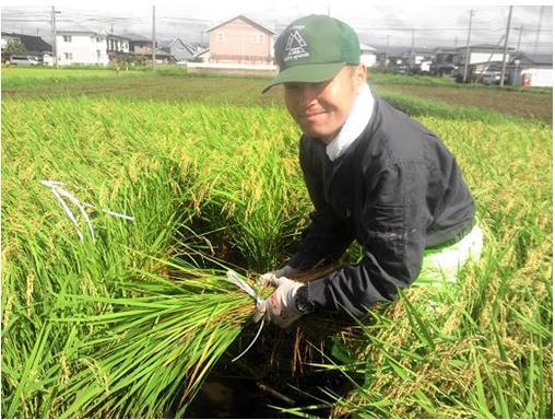 http://www.ucoop.or.jp/shouhin/shoku_shokuryo/sanchi/files/130904-1.JPG
