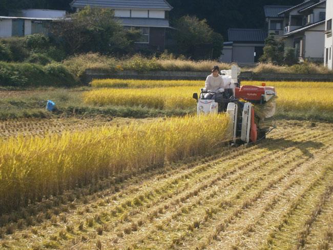 http://www.ucoop.or.jp/shouhin/shoku_shokuryo/sanchi/files/131017-08.jpg