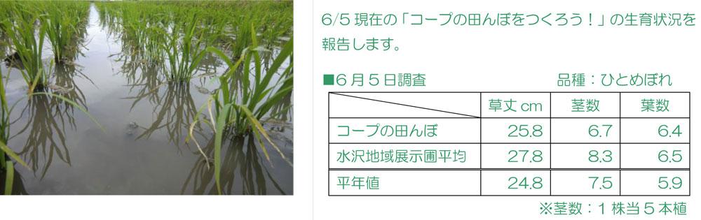 http://www.ucoop.or.jp/shouhin/shoku_shokuryo/sanchi/files/140605-3seiiku.jpg