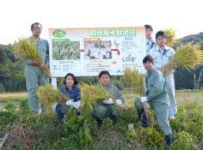 http://www.ucoop.or.jp/shouhin/shoku_shokuryo/sanchi/files/16102804.jpg