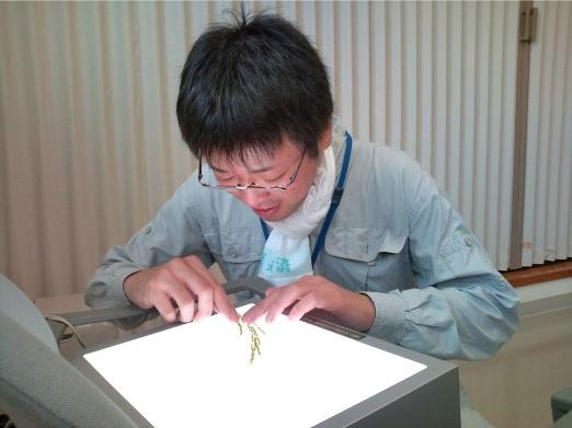 http://www.ucoop.or.jp/shouhin/shoku_shokuryo/sanchi/files/20110906m02.jpg
