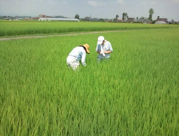 http://www.ucoop.or.jp/shouhin/shoku_shokuryo/sanchi/files/20110906m05.jpg