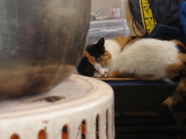 http://www.ucoop.or.jp/shouhin/shoku_shokuryo/sanchi/files/20120131b05.jpg