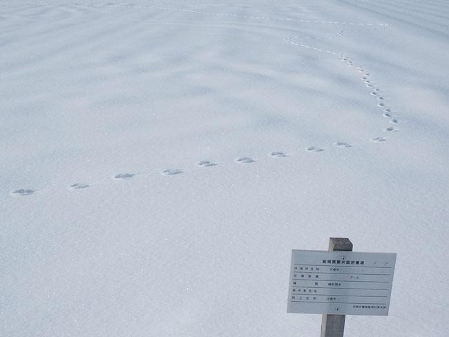 http://www.ucoop.or.jp/shouhin/shoku_shokuryo/sanchi/files/20120227b02.jpg