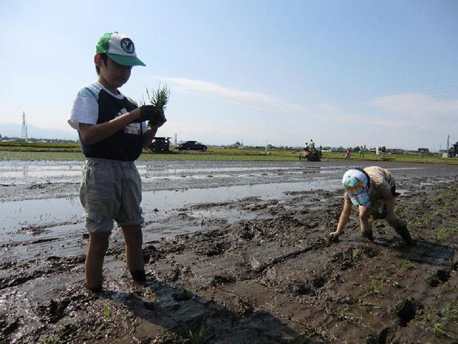 http://www.ucoop.or.jp/shouhin/shoku_shokuryo/sanchi/files/20120627as09.jpg