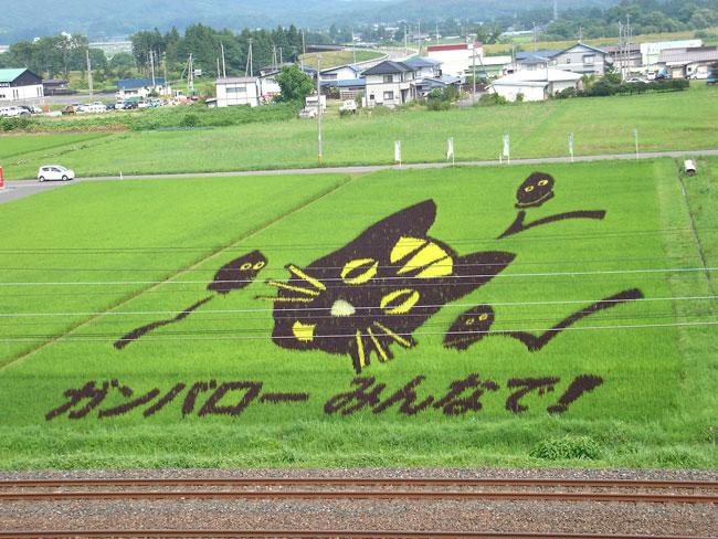 http://www.ucoop.or.jp/shouhin/shoku_shokuryo/sanchi/files/20120813sb06.jpg