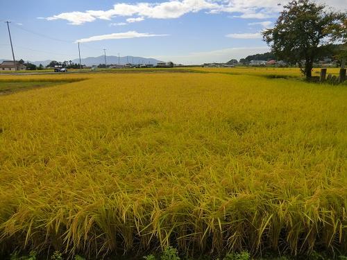 http://www.ucoop.or.jp/shouhin/shoku_shokuryo/sanchi/files/9_25iwate1.jpg