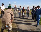 茶美豚飼料用米収穫研修