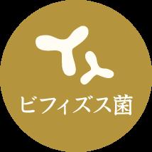 ビフィズス菌
